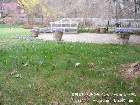 20060421b.jpg