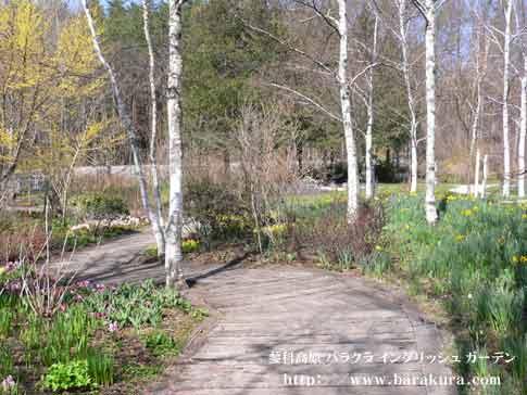 20060429b.jpg