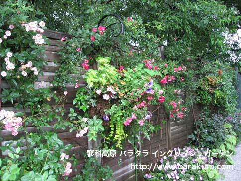 20060716a.jpg
