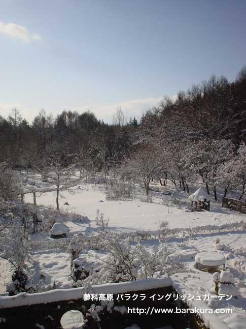 20070109c.jpg