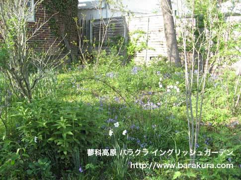 20070522i.jpg