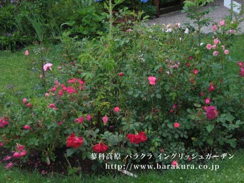 20070629_e.jpg
