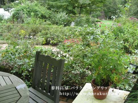 20070917f.jpg